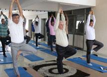 Yoga Training Session